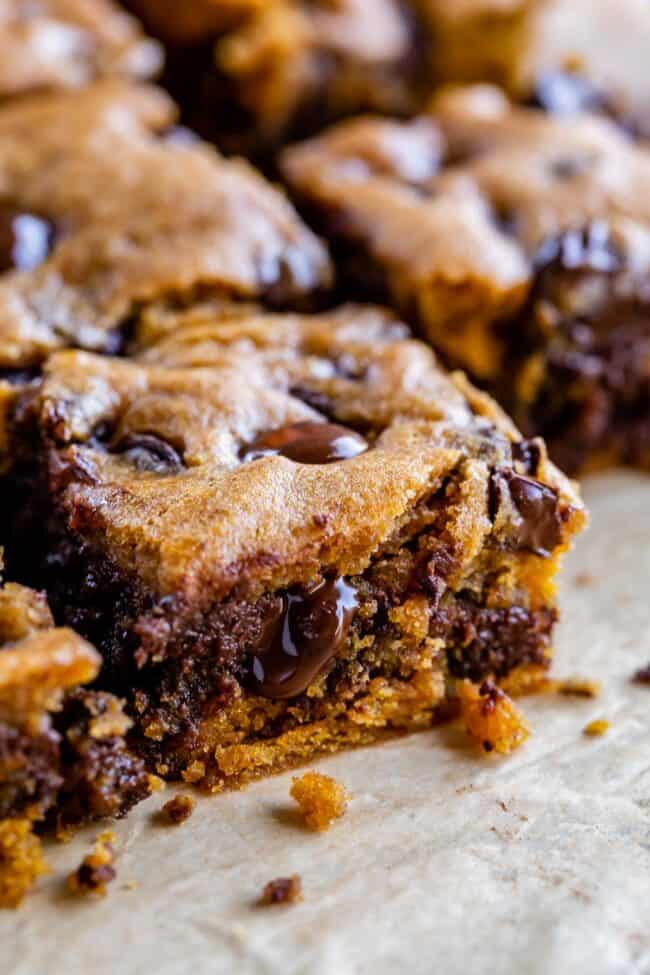 fudgy pumpkin chocolate bars