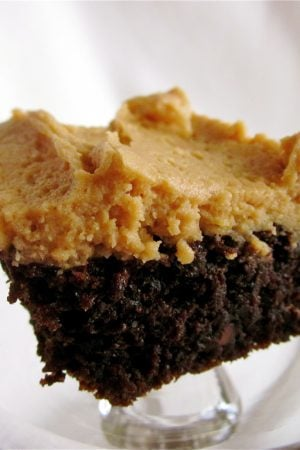 Chocolate Cake with Peanut Butter Frosting from TheFoodCharlatan.com