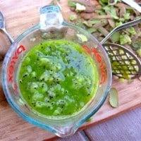 Kiwi Lime Jam
