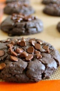 Chocolate Chip Peanut Butter Cookies (Gluten Free) from TheFoodCharlatan.com
