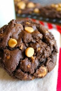 Peanut Butter Chip Chocolate Cookies from TheFoodCharlatan.com