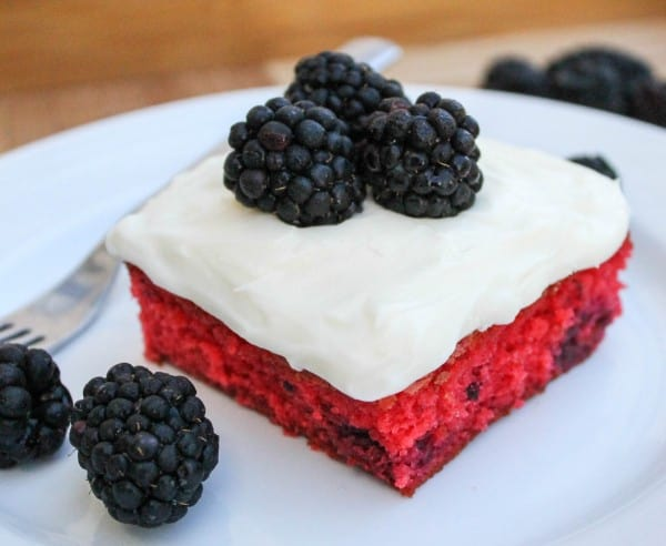 Some 4th of July Recipes For You! from The Food Charlatan