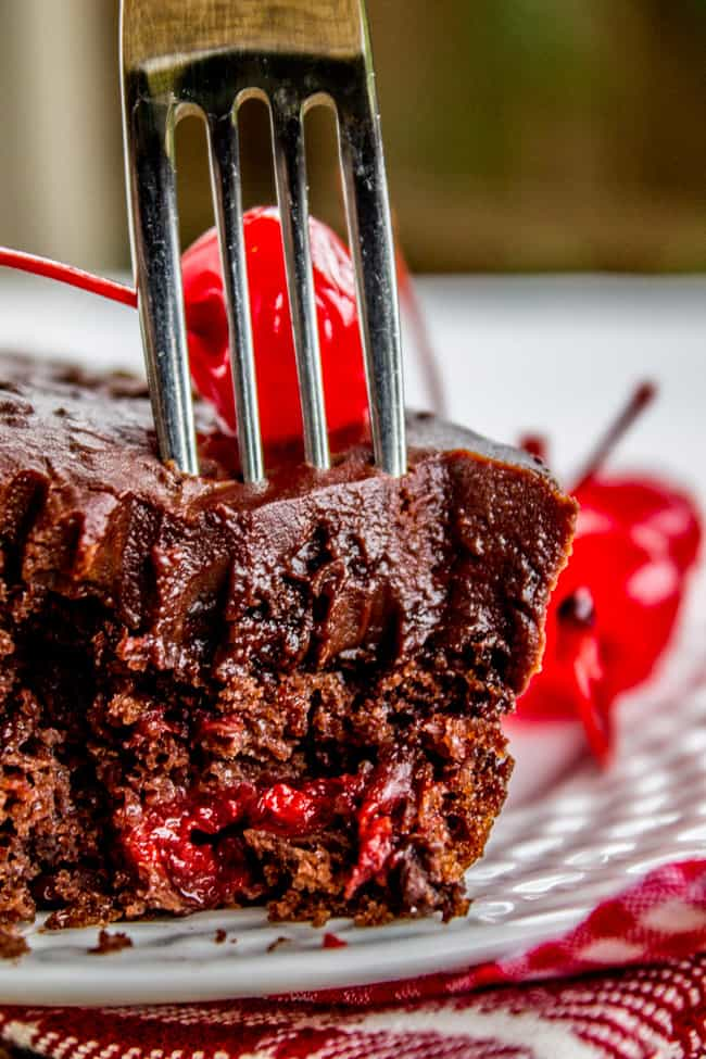 Chocolate Cherry Sheet Cake with Fudge Frosting from The Food Charlatan