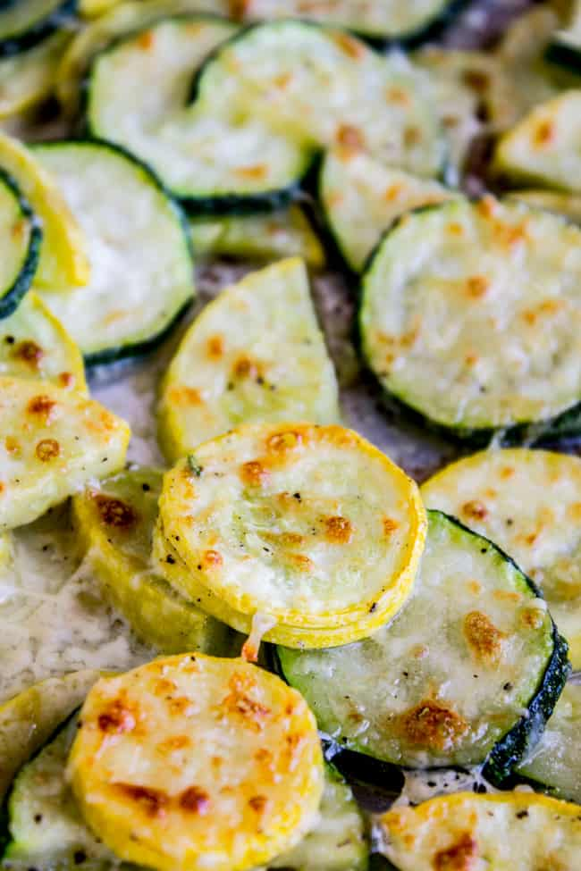 Zucchini and Yellow Squash Recipes