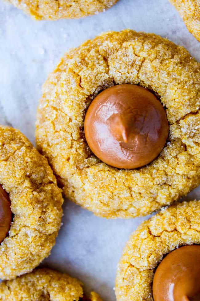 Peanut Butter Pumpkin Blossoms from The Food Charlatan