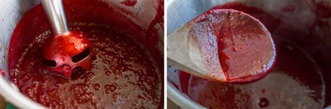 pureed cranberry sauce with immersion blender