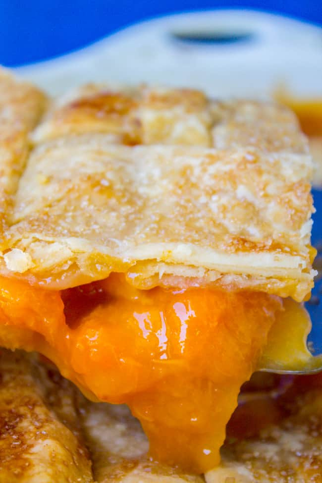Peach Apricot Slab Pie from The Food Charlatan