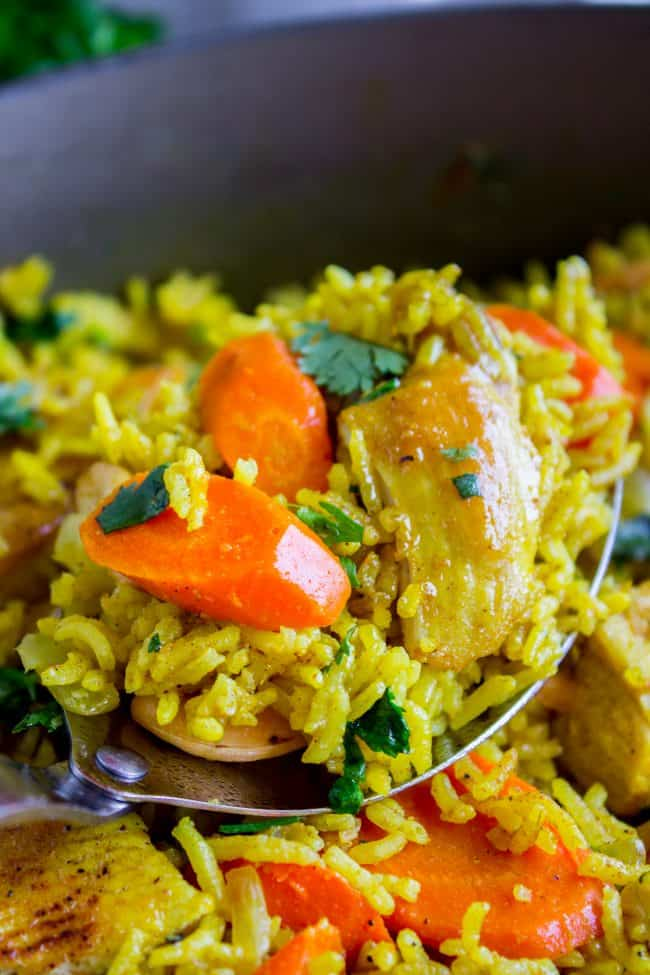 Indian chicken curry with carrots