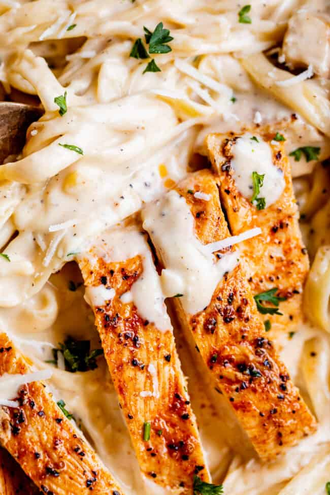 cooked chicken with alfredo sauce and pasta