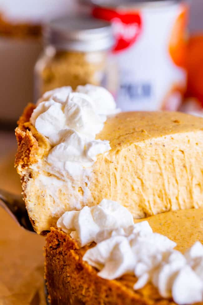 slice of easy no bake pumpkin cheesecake being lifted from the pan on a server