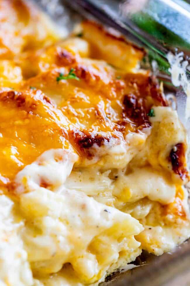 how to make scalloped potatoes super creamy
