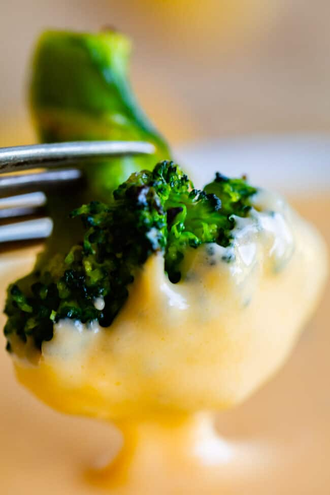 a broccoli floret being dipped into easy cheese sauce