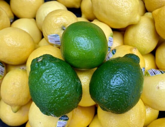 rough limes and smooth lime surrounded by lemons