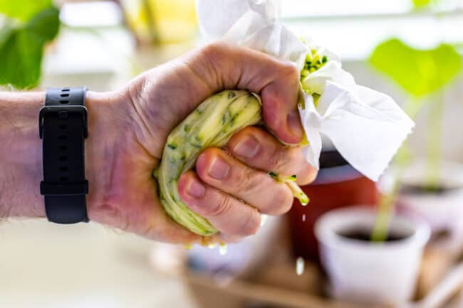 a fist squeezing shredded zucchini in a paper towel
